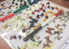 Counting is More than 1, 2, 3: Engaging Adults in K-2 Mathematics